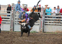2015 CEB HS Rodeo